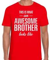 Awesome brother tekst t-shirt rood heren
