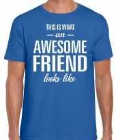 Awesome friend cadeau t-shirt blauw heren