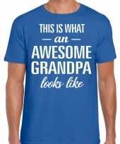 Awesome grandpa opa cadeau t-shirt blauw heren vaderdag