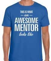 Awesome mentor cadeau t-shirt blauw heren