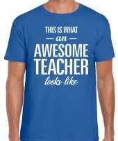 Awesome teacher cadeau meesterdag t-shirt blauw heren