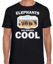 Dieren olifant t-shirt zwart heren elephants are cool shirt kudde olifanten