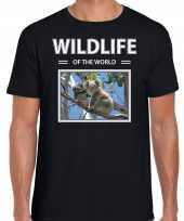 Koala t-shirt dieren foto wildlife of the world zwart heren